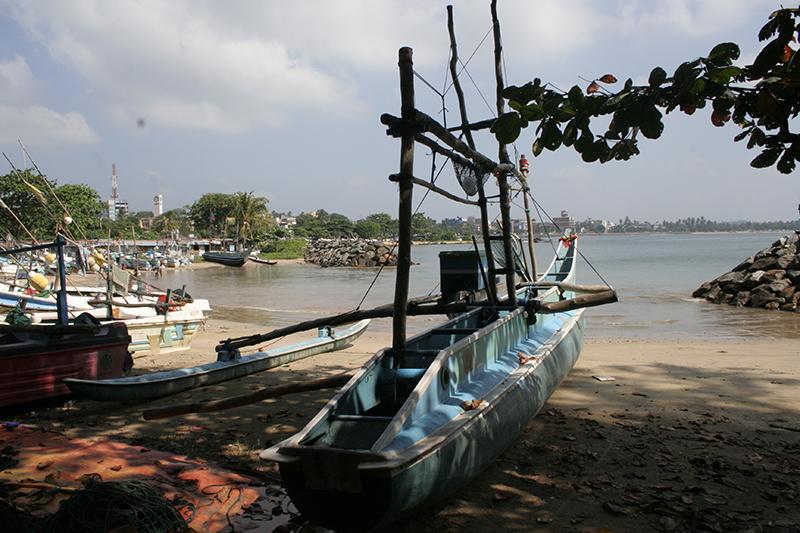 Sri Lanky 084