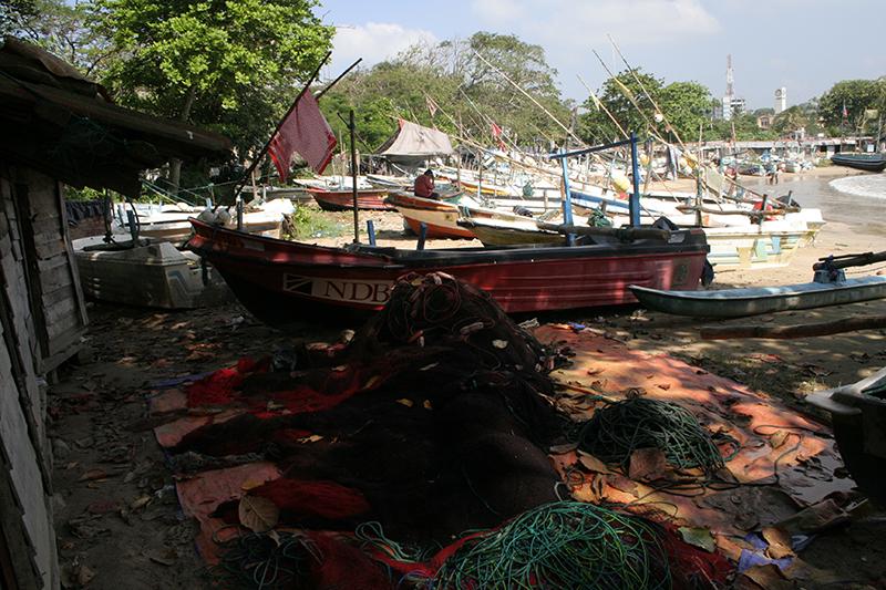 Sri Lanky 087